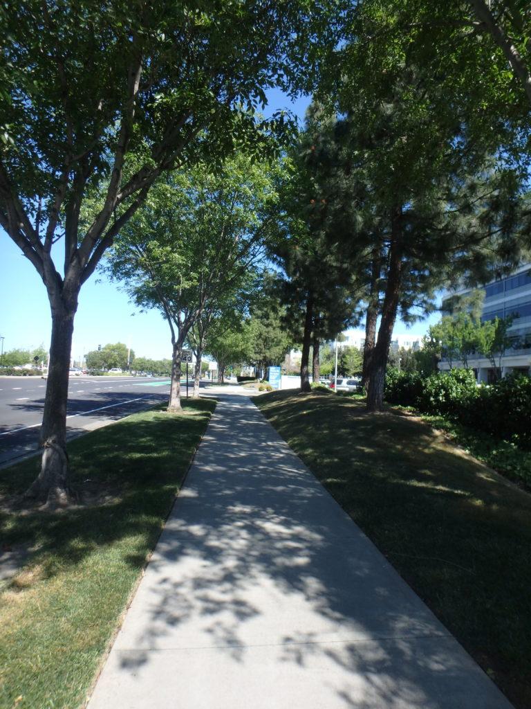 Trottoirs dans les rues de Pleasanton. Très souvent séparés de la route par un coin d'herbe. Vu la météo on voit d'ailleurs très vite où l'herbe est arrosée et où elle ne l'est pas 😉.