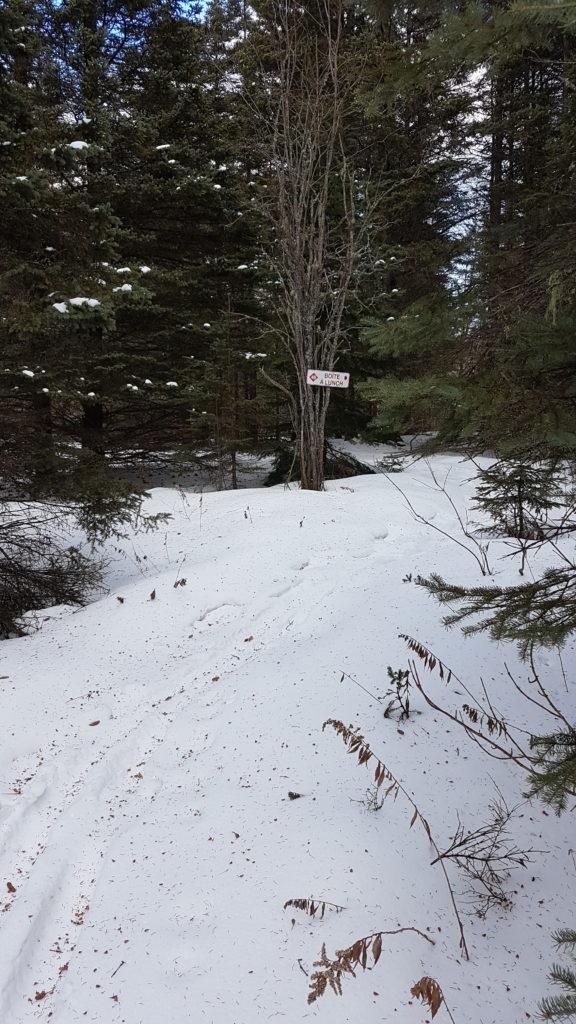promenade au Mont Saint Anne