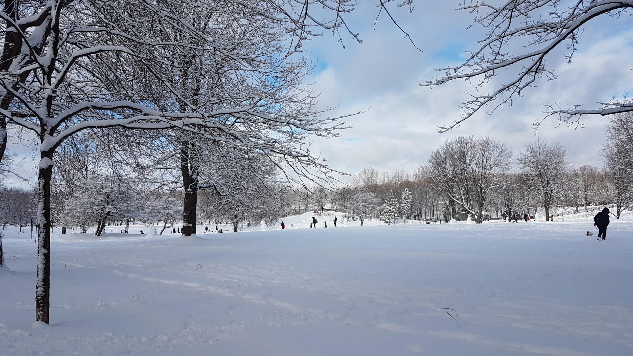 Lac aux Castors Montréal.