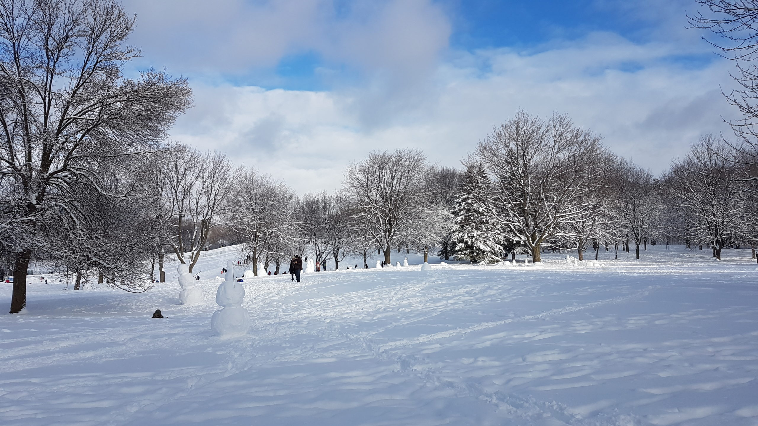 Concours de bonhommes de neige au parc du mont Royal Montréal.