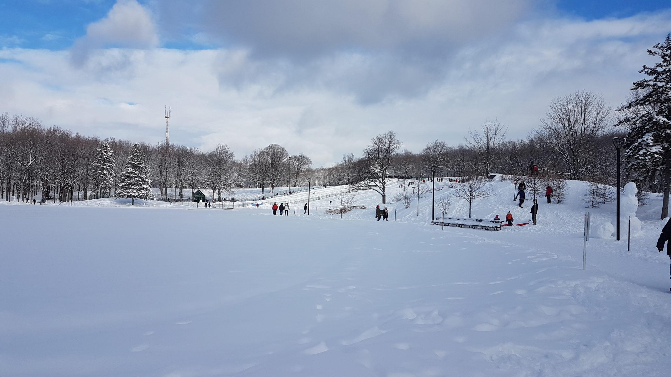 pistes de luge aménagées au parc du Mont Royal Montréal