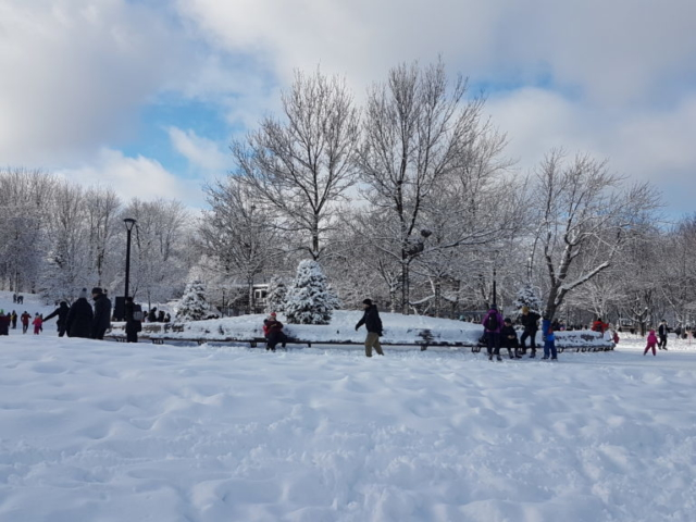 Patinoire au parc du Mont Royal Montréal.