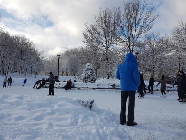 Autre vue sur la patinoire au parc du Mont Royal Montréal.