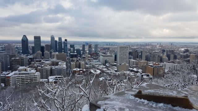 Vue depuis le belvédère du Mont Royal Montréal.