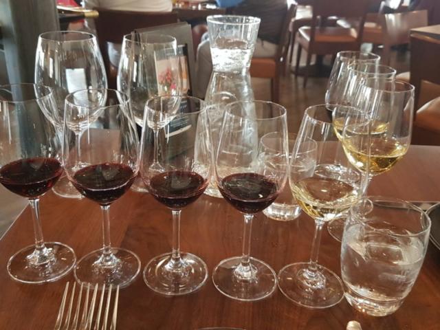 Wente winery Livermore Californie Nos désgustations de vins, principalement rouge pour moi et blanc pour Alex (chacun ses valeurs 😅).