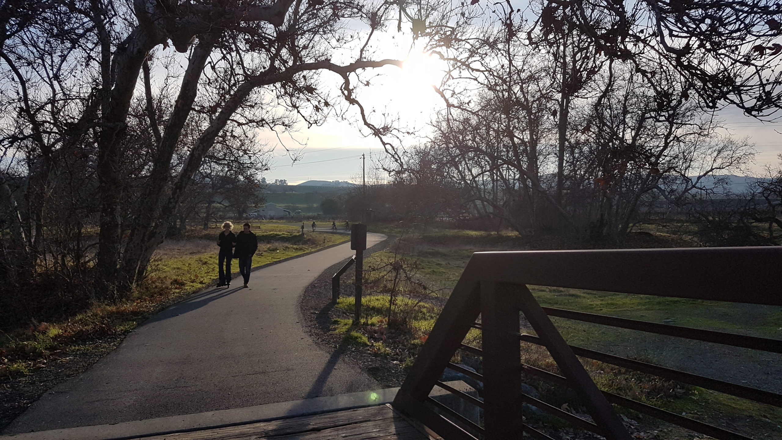 Sycamore grove park Livermore Californie