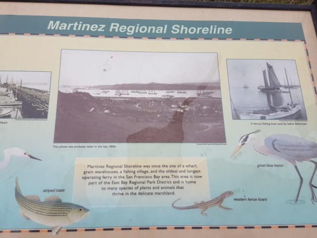 Martinez regional shoreline