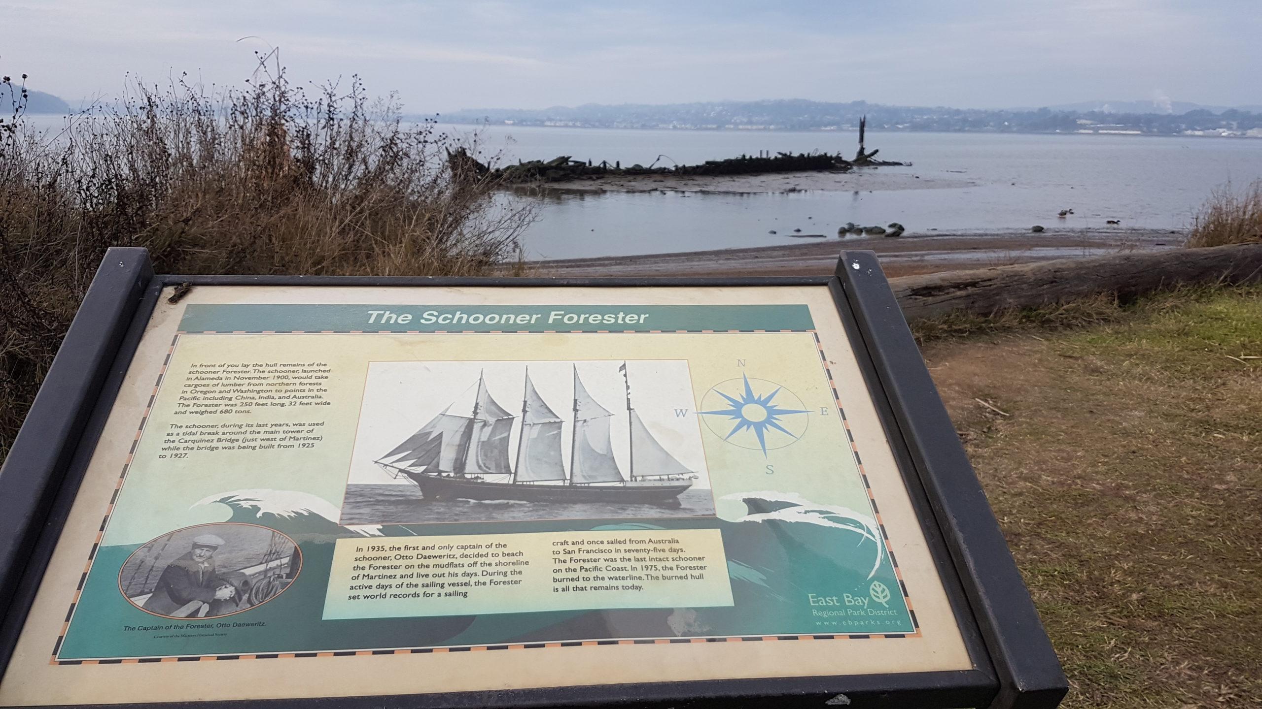 the schooner forester in martinez california
