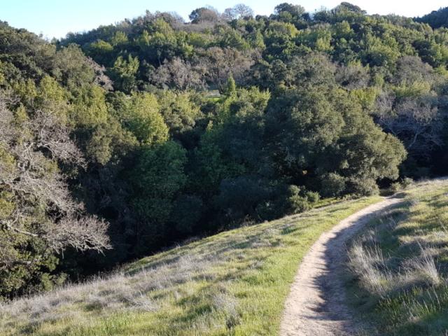 the preserve area trails pleasanton 8