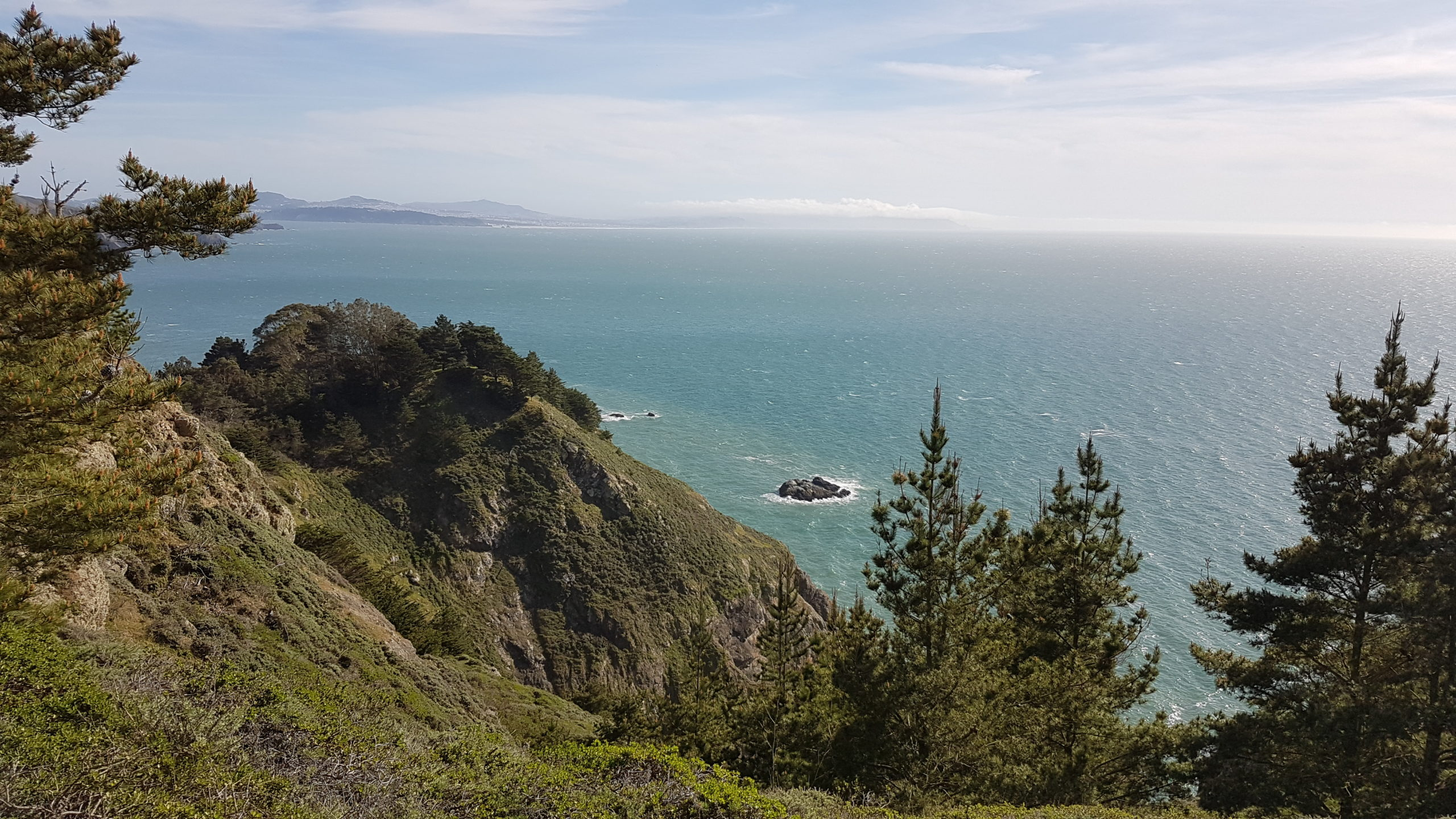 Point de vue aménagé au dessus de la plage Muir.