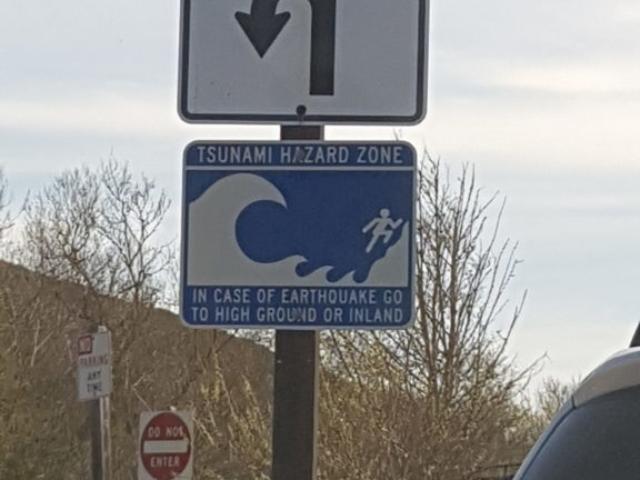 Parking de la plage Muir. Rassurant 😅.