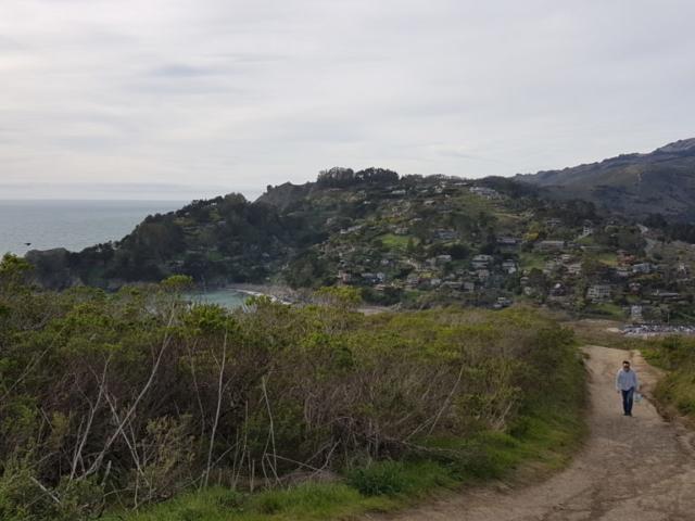 Trails autour de la plage Muir