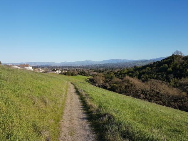 The Preserve Area Trail, Pleasanton (3)