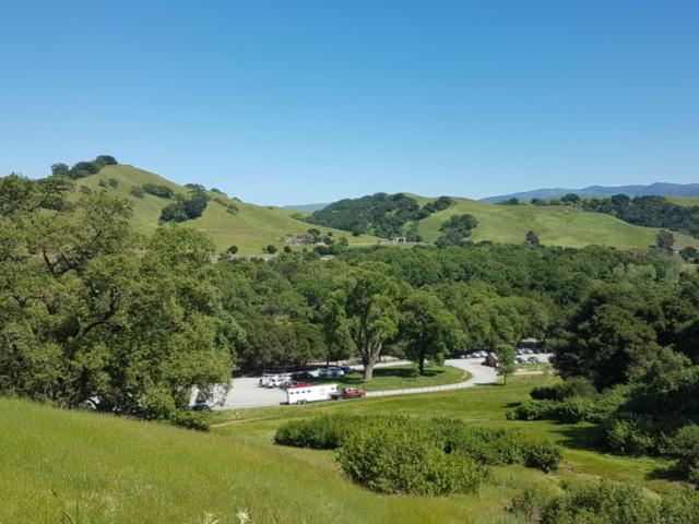 pleasanton ridge regional park 13
