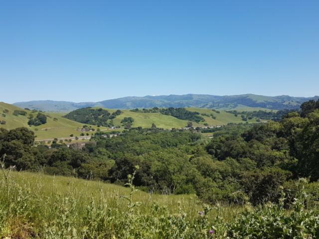 pleasanton ridge regional park 15