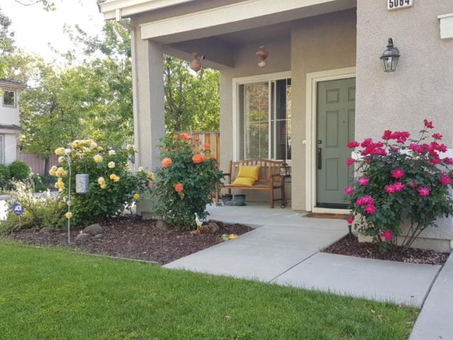 Les jardins sont souvent fleuris, un vrai plaisir pour les yeux.