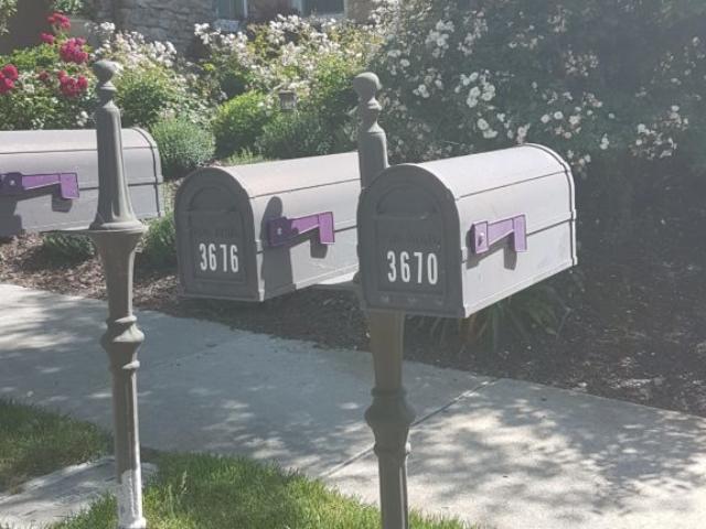 Les boîtes aux lettres vues de l'autre côté, avec le petit levier que le facteur monte lorsqu'il y a du courier.