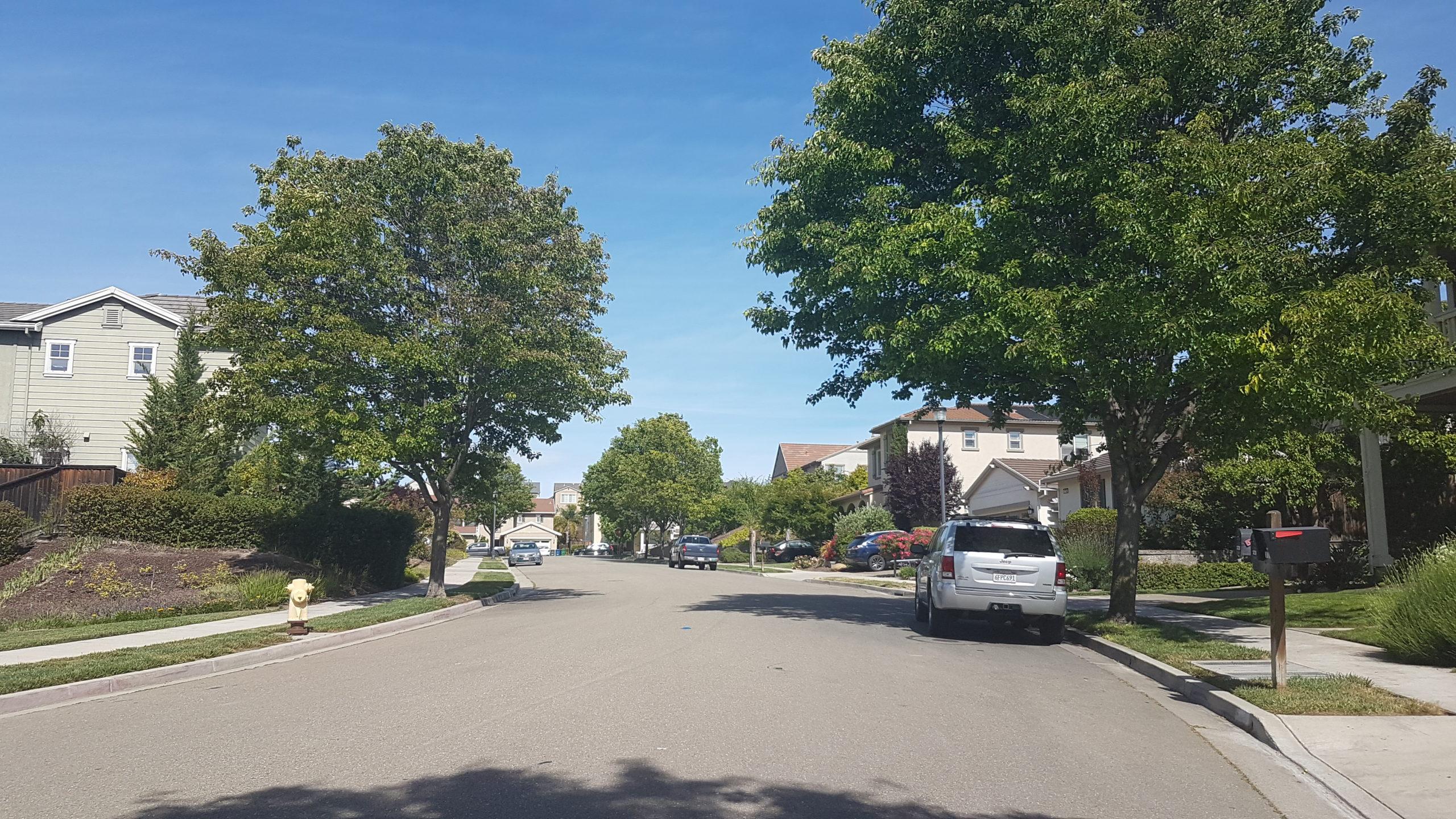 rue à san ramon