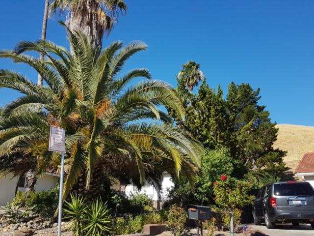 clayton californie 6
