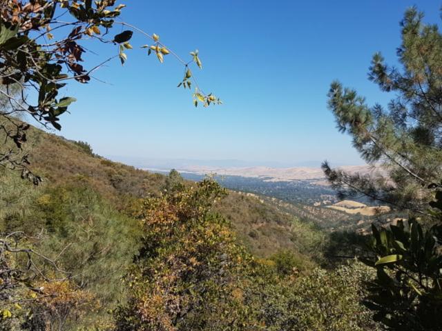 Toujours le même point de vue mais avec d'autres arbres au premier plan 😅