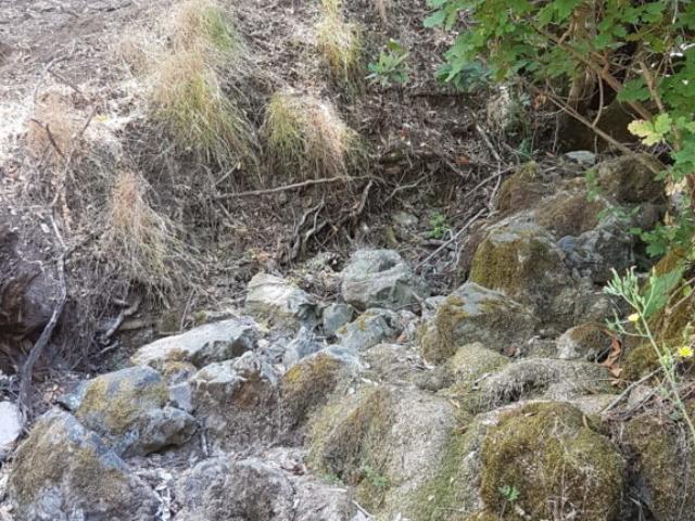 Ruisseau asséché....