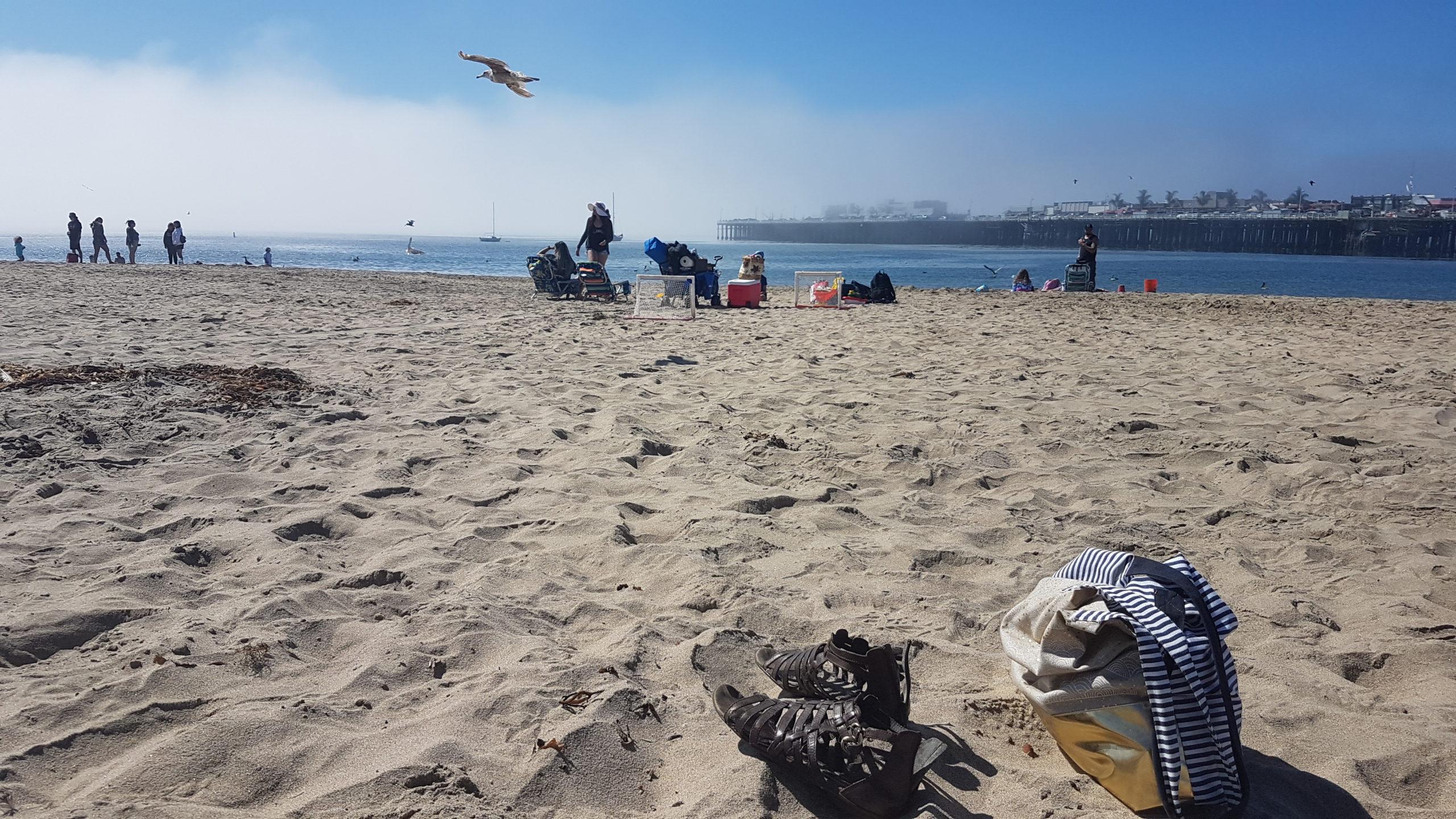 Quel bonheur d'être sur la plage, les pieds dans le sable fin 😍