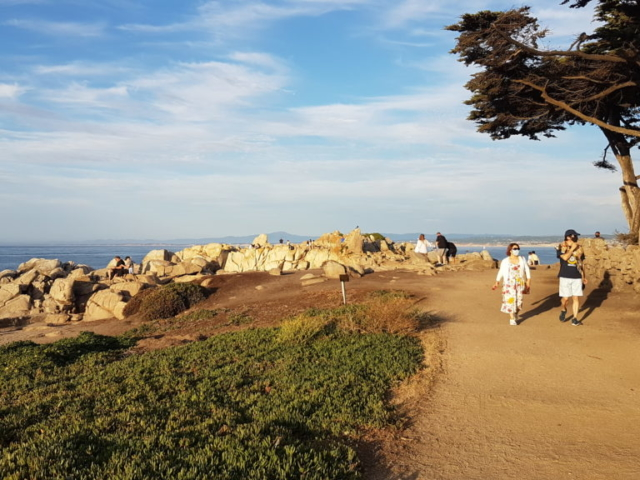 pacific grove 10  lovers point